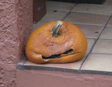 Sorry Lil' Pumpkin