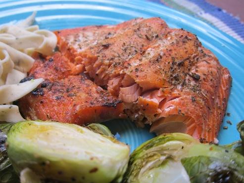 salmon 004