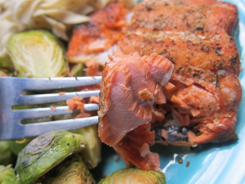 salmon 011