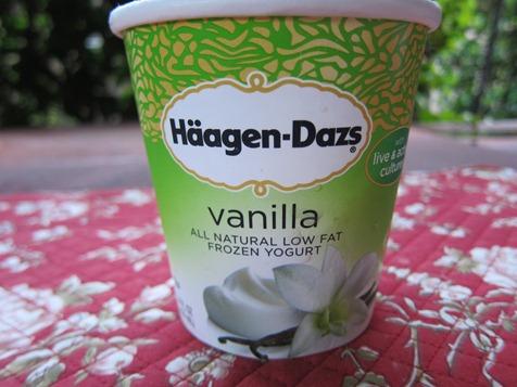 mango milkshake 038