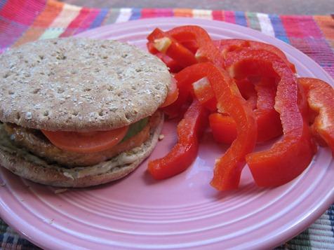 salmon burger 017