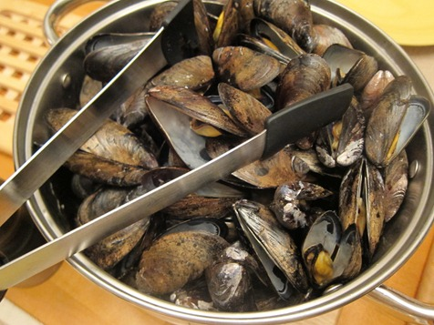 mussels 014
